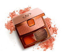 Bronzed Effect Blusher